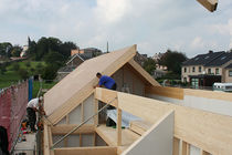 Construction: le bois monte en graine